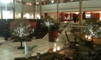 The hotel was beautiful!