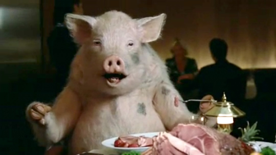 """Don't worry.  They weren't organic pigs.  It's totally cool if they eat """"animal by-products."""""""